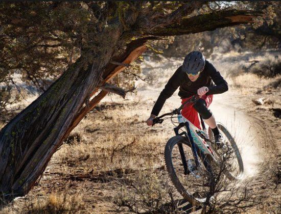 Bingham Cyclery Salt Lake City