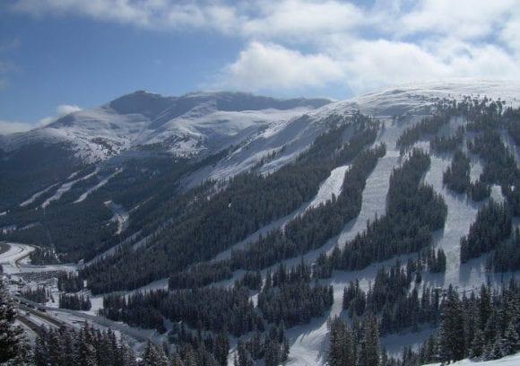 Black Tie Ski Delivery Loveland