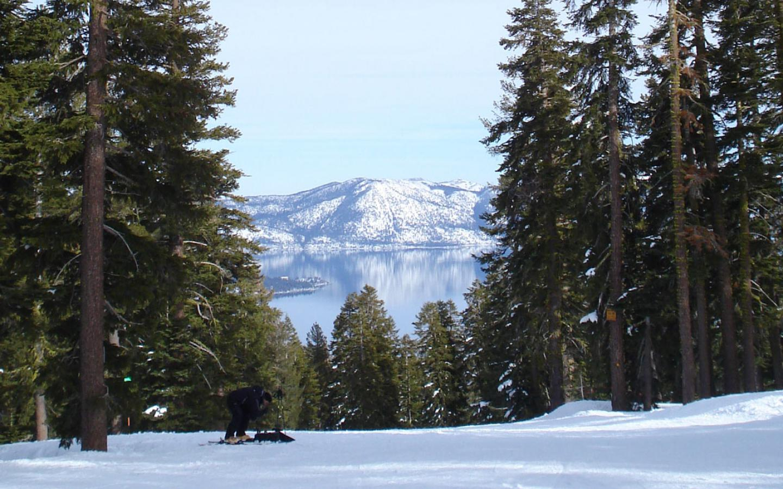 Black Tie Ski Delivery Boreal Mtn
