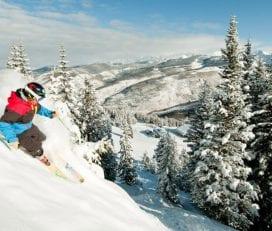 Black Tie Ski Delivery Vail