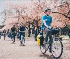 Cycle Portland