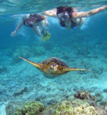snorkeling honolulu