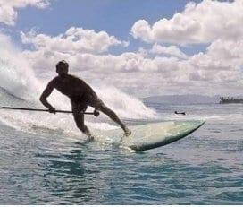 Go Nuts Hawaii