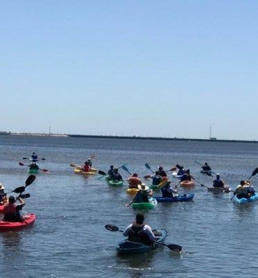 tampa bay kayak sup rental bay breeze