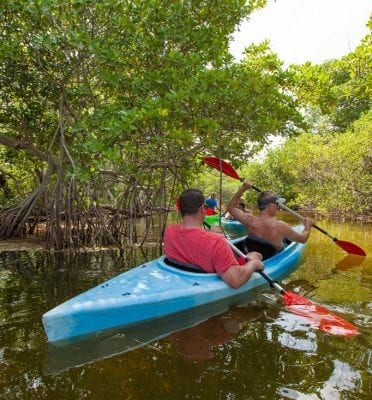 key west fl snorkel kayak tours