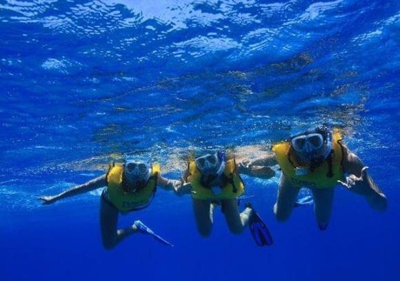 Living Ocean Tours