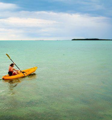 shell key kayak tours tampa bay backwater